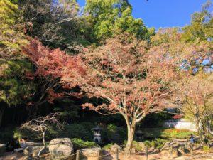 【どうぶつひろば】長崎公園へ行ってみた!【月見茶屋】